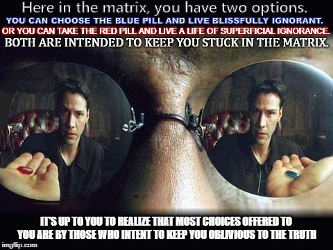 Here in the matrix, you have two options. YOU CAN CHOOSE THE BLUE PILL AND LIVE BLISSFULLY IGNORANT. OR YOU CAN TAKE THE RED PILL AND LIVE A | image tagged in morphius | made w/ Imgflip meme maker