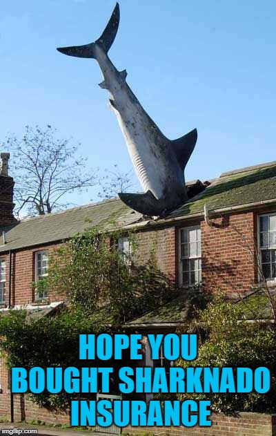 HOPE YOU BOUGHT SHARKNADO INSURANCE | made w/ Imgflip meme maker
