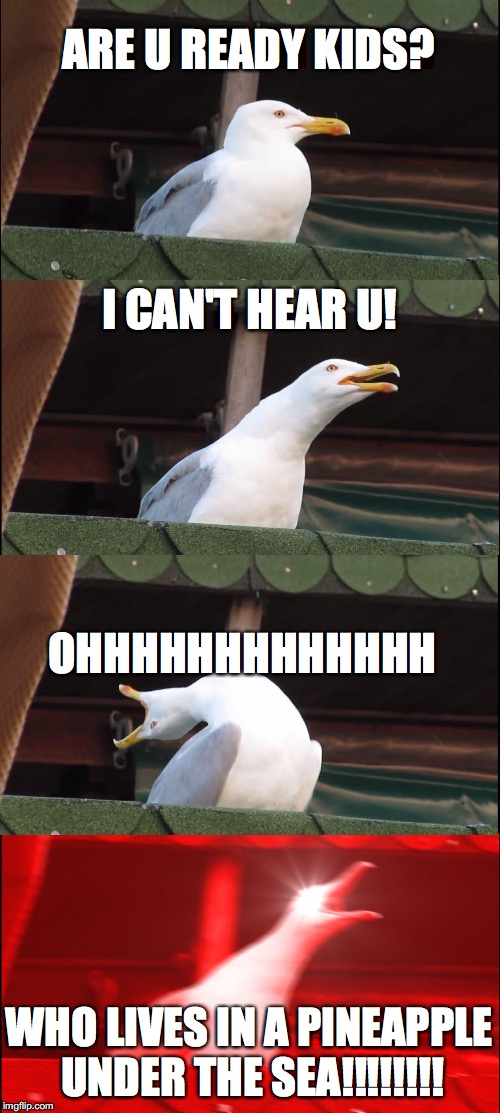 Inhaling Seagull Meme | ARE U READY KIDS? I CAN'T HEAR U! OHHHHHHHHHHHHH WHO LIVES IN A PINEAPPLE UNDER THE SEA!!!!!!!! | image tagged in memes,inhaling seagull | made w/ Imgflip meme maker