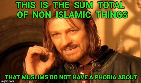 We have nothing to fear | THIS  IS  THE  SUM  TOTAL  OF  NON  ISLAMIC  THINGS THAT MUSLIMS DO NOT HAVE A PHOBIA ABOUT | image tagged in memes,one does not simply,islamophobia,phobia,zero | made w/ Imgflip meme maker
