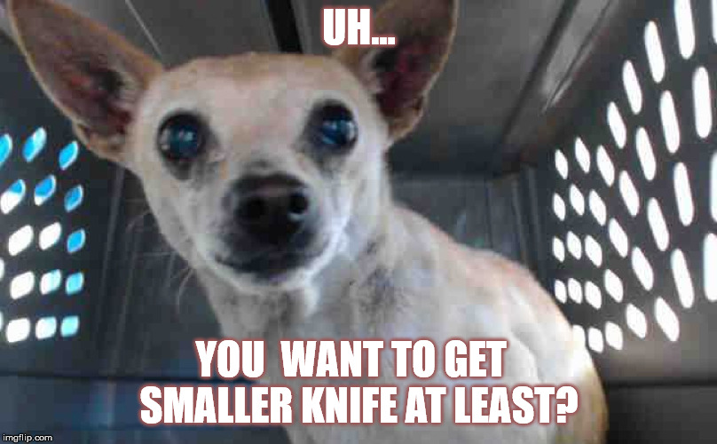UH... YOU  WANT TO GET   SMALLER KNIFE AT LEAST? | made w/ Imgflip meme maker