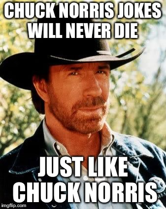 Chuck Norris | CHUCK NORRIS JOKES WILL NEVER DIE JUST LIKE CHUCK NORRIS | image tagged in memes,chuck norris | made w/ Imgflip meme maker