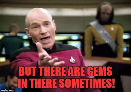 Picard Wtf Meme | BUT THERE ARE GEMS IN THERE SOMETIMES! | image tagged in memes,picard wtf | made w/ Imgflip meme maker