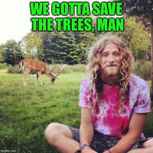 WE GOTTA SAVE THE TREES, MAN | made w/ Imgflip meme maker