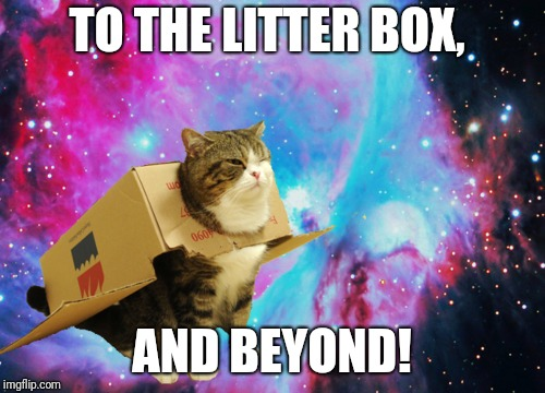 Cat, look! A mouse! | TO THE LITTER BOX, AND BEYOND! | image tagged in space cat with box,cats,airplane cat,memes,ilikepie314159265358979 | made w/ Imgflip meme maker