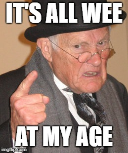 Back In My Day Meme | IT'S ALL WEE AT MY AGE | image tagged in memes,back in my day | made w/ Imgflip meme maker