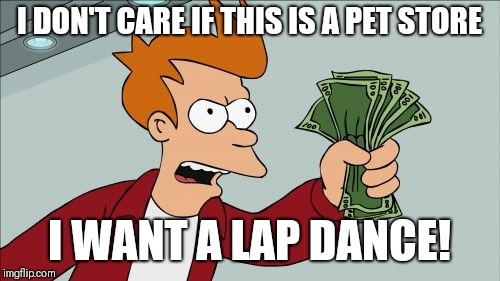 Shut Up And Take My Money Fry Meme | I DON'T CARE IF THIS IS A PET STORE I WANT A LAP DANCE! | image tagged in memes,shut up and take my money fry | made w/ Imgflip meme maker