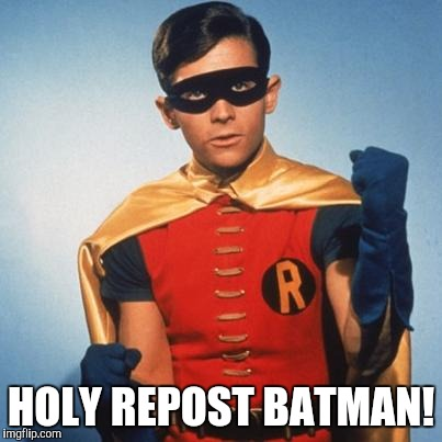 Robin | HOLY REPOST BATMAN! | image tagged in robin | made w/ Imgflip meme maker