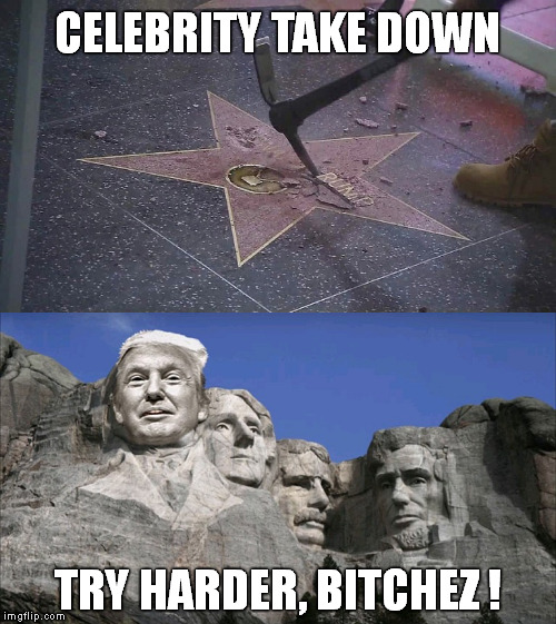 Engraved in Stone | CELEBRITY TAKE DOWN TRY HARDER, B**CHEZ ! | image tagged in memes,funny,hollywood,donald trump,star,walk of fame | made w/ Imgflip meme maker