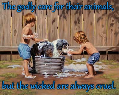 Proverbs 12:10 The Godly Care for Their Animals, The Wicked are Cruel  | The godly care for their animals, but the wicked are always cruel. | image tagged in bible,holy bible,god,animal rights,animals to humans,animals | made w/ Imgflip meme maker