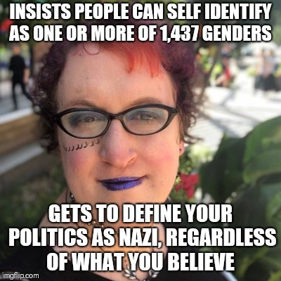 INSISTS PEOPLE CAN SELF IDENTIFY AS ONE OR MORE OF 1,437 GENDERS GETS TO DEFINE YOUR POLITICS AS NAZI, REGARDLESS OF WHAT YOU BELIEVE | image tagged in dr elizabeth sandifer | made w/ Imgflip meme maker