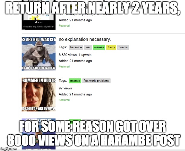 ok wow | RETURN AFTER NEARLY 2 YEARS, FOR SOME REASON GOT OVER 8000 VIEWS ON A HARAMBE POST | image tagged in memes,time,fortnite | made w/ Imgflip meme maker