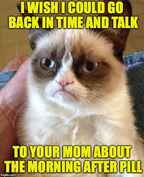 To know me is to love me hating you. | I WISH I COULD GO BACK IN TIME AND TALK TO YOUR MOM ABOUT THE MORNING AFTER PILL | image tagged in memes,grumpy cat,stupidity control | made w/ Imgflip meme maker