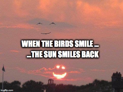 this one is for people who watch too much depressing news | WHEN THE BIRDS SMILE ... ...THE SUN SMILES BACK | image tagged in smile,depression,sun and moon,happiness | made w/ Imgflip meme maker