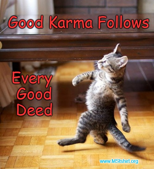 Cat Walking Like A Boss | Good Karma Follows Every Good Deed www.MStshirt.org | image tagged in karma,karma's a bitch,instant karma | made w/ Imgflip meme maker