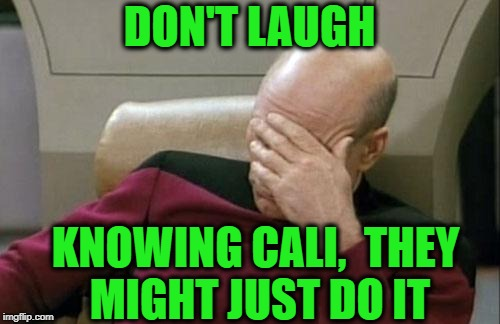 Captain Picard Facepalm Meme | DON'T LAUGH KNOWING CALI,  THEY MIGHT JUST DO IT | image tagged in memes,captain picard facepalm | made w/ Imgflip meme maker