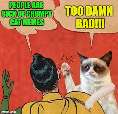 Grumpy Slapping Robin | PEOPLE ARE SICK OF GRUMPY CAT MEMES TOO DAMN BAD!!! | image tagged in funny memes,robin,grumpy cat,batman slapping robin,cat | made w/ Imgflip meme maker