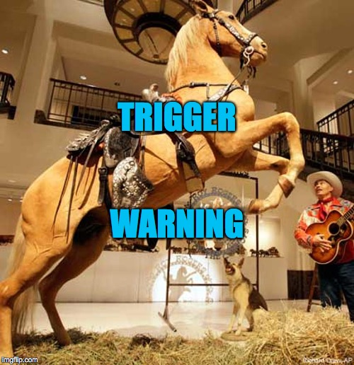 Trigger |  TRIGGER; WARNING | image tagged in trigger | made w/ Imgflip meme maker