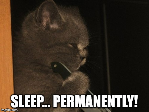 SLEEP... PERMANENTLY! | made w/ Imgflip meme maker