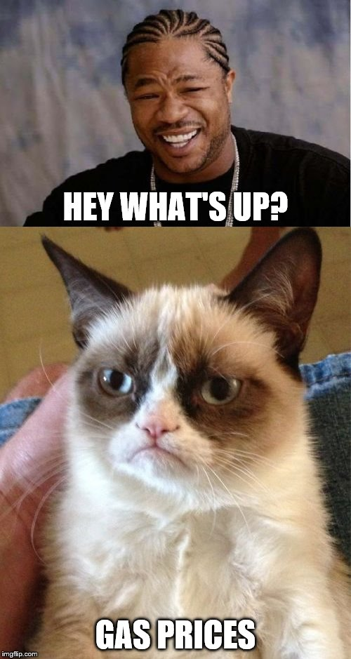 Unfortunately | HEY WHAT'S UP? GAS PRICES | image tagged in yo dawg heard you,grumpy cat,gas station | made w/ Imgflip meme maker