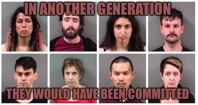 Generational Shit Show  | IN ANOTHER GENERATION THEY WOULD HAVE BEEN COMMITTED | image tagged in mentally ill,shit,berkeley,proud,antifa,fish | made w/ Imgflip meme maker