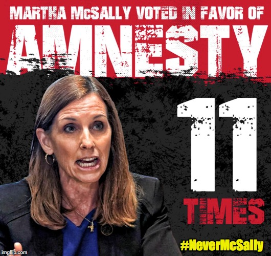RINO Martha McSally Favors Amnesty for Illegal Aliens, #NeverMcSally for Arizona Senate | #NeverMcSally | image tagged in martha mcsally,amnesty,illegal immigration,arizona,kelli ward,daca | made w/ Imgflip meme maker