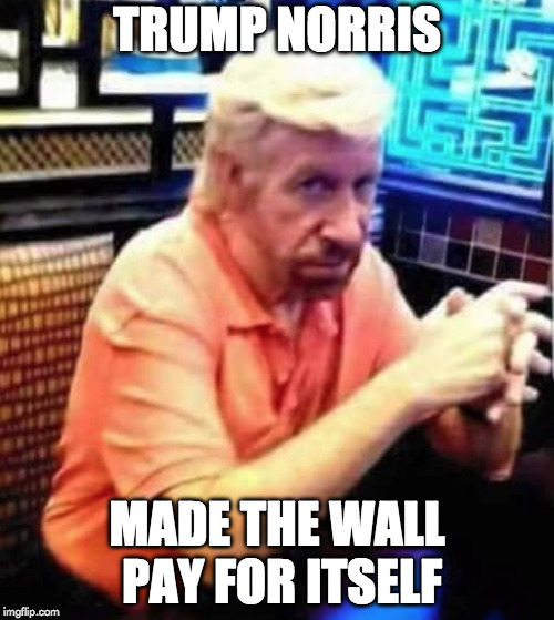 Show them how it's done. | TRUMP NORRIS MADE THE WALL PAY FOR ITSELF | image tagged in chuck norris,trump wall,wall,donald trump | made w/ Imgflip meme maker