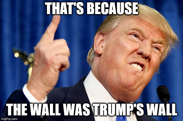 Donald Trump | THAT'S BECAUSE THE WALL WAS TRUMP'S WALL | image tagged in donald trump | made w/ Imgflip meme maker