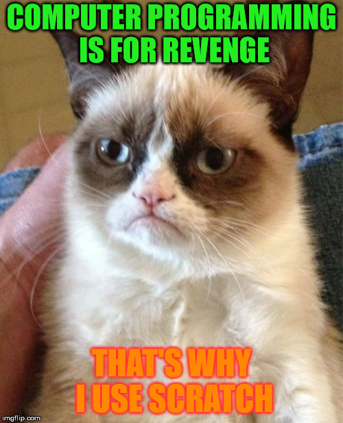 Grumpy Cat's wise opinion on programming | COMPUTER PROGRAMMING IS FOR REVENGE THAT'S WHY I USE SCRATCH | image tagged in memes,grumpy cat,cats,cat,programming,scratch | made w/ Imgflip meme maker