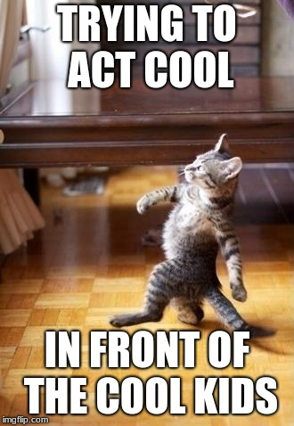 Cool Cat Stroll | TRYING TO ACT COOL IN FRONT OF THE COOL KIDS | image tagged in memes,cool cat stroll | made w/ Imgflip meme maker
