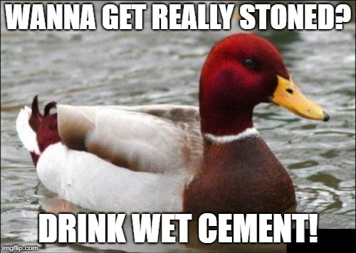 Malicious Advice Mallard | WANNA GET REALLY STONED? DRINK WET CEMENT! | image tagged in memes,malicious advice mallard | made w/ Imgflip meme maker
