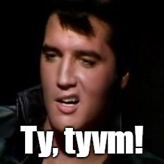Elvis, thank you | Ty, tyvm! | image tagged in elvis thank you | made w/ Imgflip meme maker