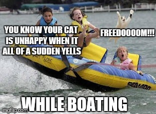 Now is my chance I must go!! | YOU KNOW YOUR CAT IS UNHAPPY WHEN IT ALL OF A SUDDEN YELLS FREEDOOOOM!!! WHILE BOATING | image tagged in memes,funny,cats,dogs,boating,pets | made w/ Imgflip meme maker