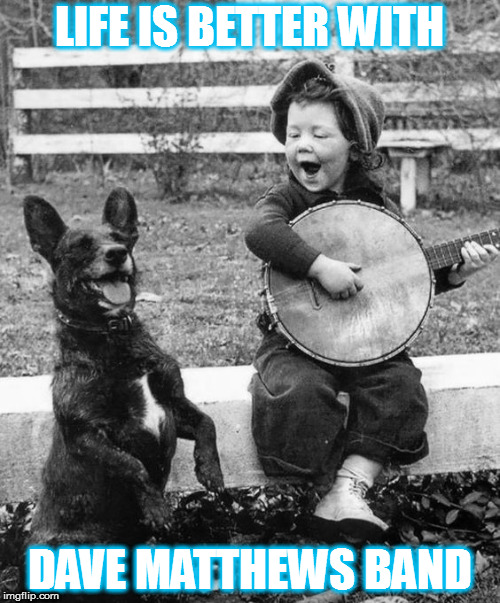 LIFE IS BETTER WITH DMB! | LIFE IS BETTER WITH DAVE MATTHEWS BAND | image tagged in dmb,dave matthews band,dog,banjo,boy,life is better | made w/ Imgflip meme maker
