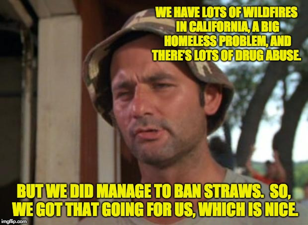 I got that going for me, which is nice. | WE HAVE LOTS OF WILDFIRES IN CALIFORNIA, A BIG HOMELESS PROBLEM, AND THERE'S LOTS OF DRUG ABUSE. BUT WE DID MANAGE TO BAN STRAWS.  SO, WE GO | image tagged in memes,so i got that goin for me which is nice | made w/ Imgflip meme maker