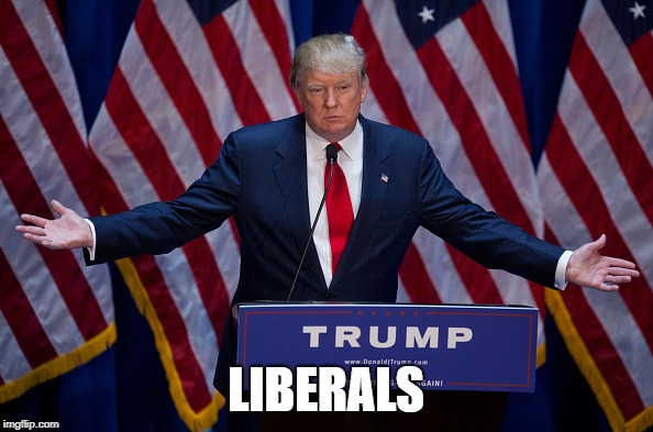 Donald Trump | LIBERALS | image tagged in donald trump | made w/ Imgflip meme maker