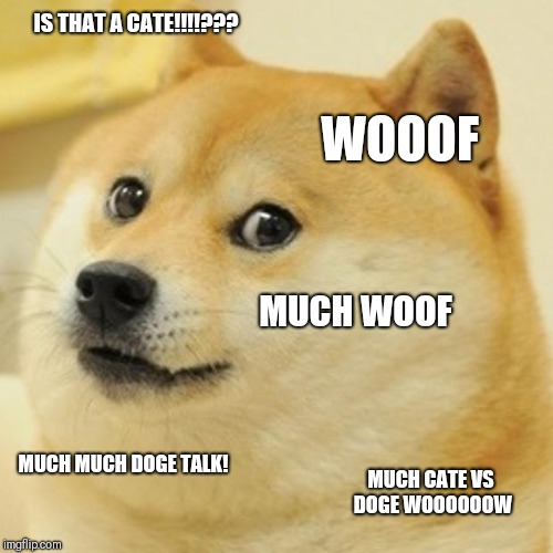 Doge | IS THAT A CATE!!!!??? WOOOF MUCH WOOF MUCH MUCH DOGE TALK! MUCH CATE VS DOGE WOOOOOOW | image tagged in memes,doge | made w/ Imgflip meme maker