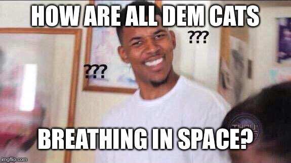 Black guy confused | HOW ARE ALL DEM CATS BREATHING IN SPACE? | image tagged in black guy confused | made w/ Imgflip meme maker