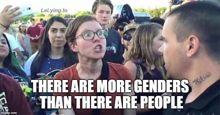 More genders than common sense | THERE ARE MORE GENDERS THAN THERE ARE PEOPLE | image tagged in did you just assume my gender | made w/ Imgflip meme maker