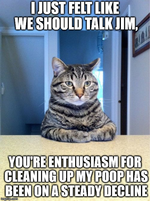 Take A Seat Cat | I JUST FELT LIKE WE SHOULD TALK JIM, YOU'RE ENTHUSIASM FOR CLEANING UP MY POOP HAS BEEN ON A STEADY DECLINE | image tagged in memes,take a seat cat | made w/ Imgflip meme maker
