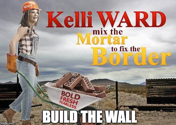 Build the Wall - Kelli Ward Arizona Senate. Immigration, Safe Borders | BUILD THE WALL | image tagged in kelli ward,immigration,build the wall,arizona,senate,border | made w/ Imgflip meme maker