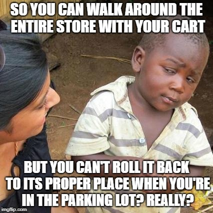Third World Skeptical Kid Meme | SO YOU CAN WALK AROUND THE ENTIRE STORE WITH YOUR CART BUT YOU CAN'T ROLL IT BACK TO ITS PROPER PLACE WHEN YOU'RE IN THE PARKING LOT? REALLY | image tagged in memes,third world skeptical kid | made w/ Imgflip meme maker