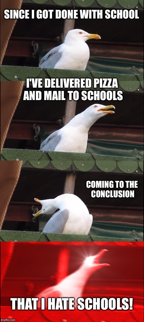 Circa 2002 | SINCE I GOT DONE WITH SCHOOL I'VE DELIVERED PIZZA AND MAIL TO SCHOOLS COMING TO THE CONCLUSION THAT I HATE SCHOOLS! | image tagged in memes,inhaling seagull,school,pizza,mail | made w/ Imgflip meme maker