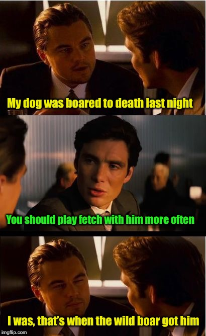 And you though I misspelled bored | My dog was boared to death last night I was, that's when the wild boar got him You should play fetch with him more often | image tagged in memes,inception,pig,board | made w/ Imgflip meme maker