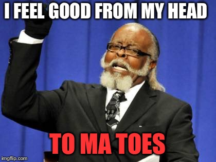 Too Damn High Meme | I FEEL GOOD FROM MY HEAD TO MA TOES | image tagged in memes,too damn high | made w/ Imgflip meme maker