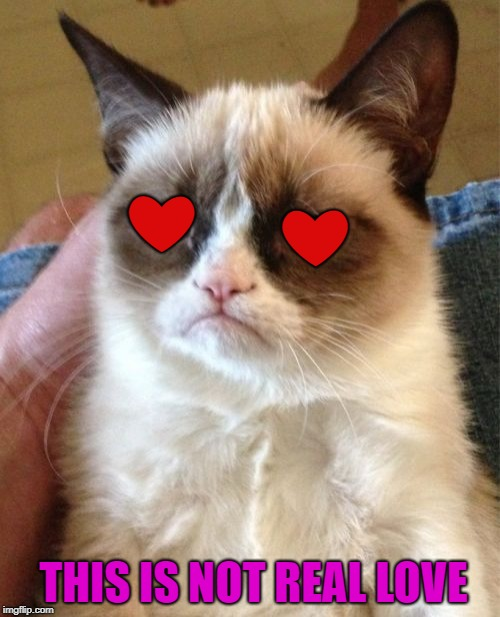 Grumpy Cat Meme | ❤ ❤ THIS IS NOT REAL LOVE | image tagged in memes,grumpy cat | made w/ Imgflip meme maker