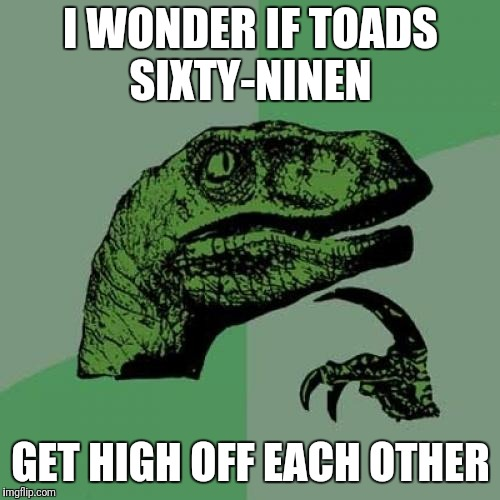 Philosoraptor Meme | I WONDER IF TOADS SIXTY-NINEN GET HIGH OFF EACH OTHER | image tagged in memes,philosoraptor | made w/ Imgflip meme maker