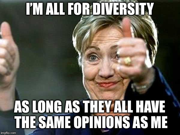 Hilary Clinton  | I'M ALL FOR DIVERSITY AS LONG AS THEY ALL HAVE THE SAME OPINIONS AS ME | image tagged in hilary clinton | made w/ Imgflip meme maker
