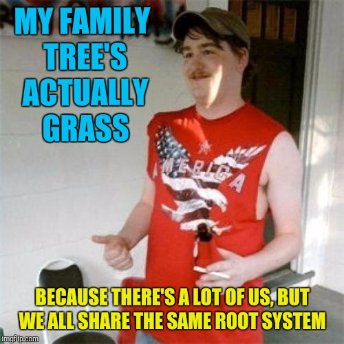 Redneck Randal Meme | MY FAMILY TREE'S ACTUALLY GRASS BECAUSE THERE'S A LOT OF US, BUT WE ALL SHARE THE SAME ROOT SYSTEM | image tagged in memes,redneck randal | made w/ Imgflip meme maker