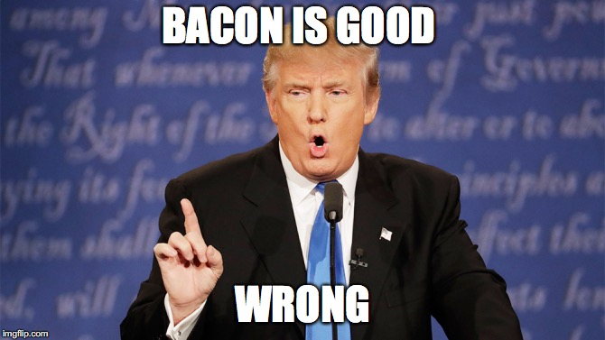 Donald Trump Wrong | BACON IS GOOD WRONG | image tagged in donald trump wrong | made w/ Imgflip meme maker